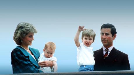 王室宝宝的秘密